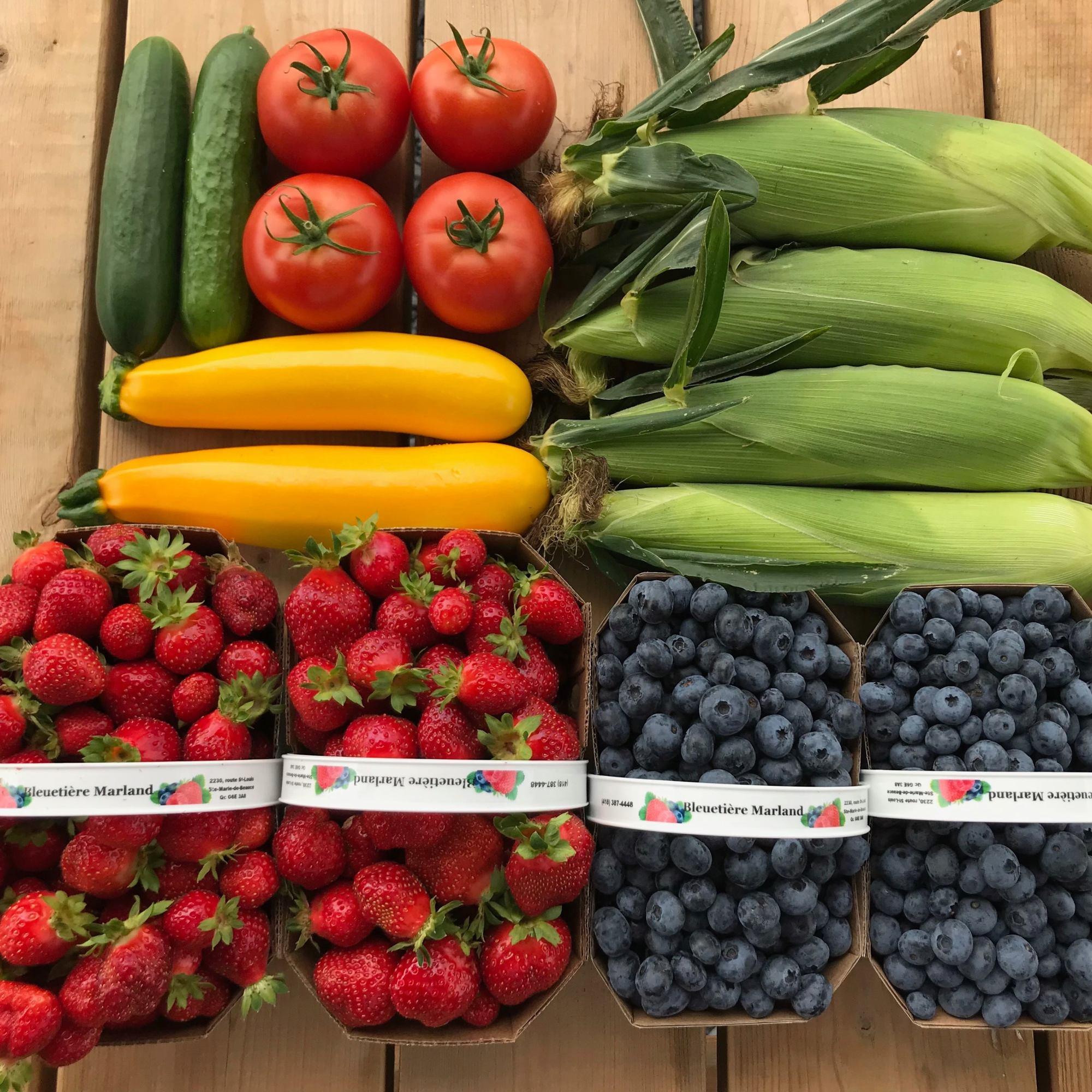 vente autocueillette agrotourisme cueillette fruits légumes agriculture